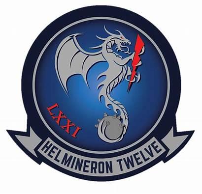 Hm Squadron Patches Usn Frank Capt Ret
