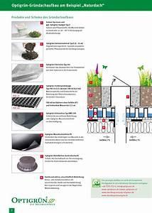 Extensive Dachbegrünung Aufbau : schichtaufbau der dachbegr nung ratgeber von ~ Whattoseeinmadrid.com Haus und Dekorationen