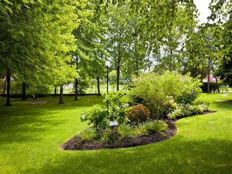 Gartengestaltung Gräser Garten by Inselbeet Anlegen So Gestalten Sie Ihren Garten