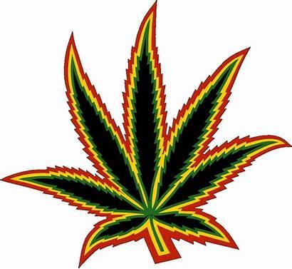 Weed Leaf Marijuana Cannabis Clipart Pot Transparent