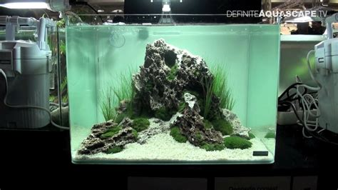 Aquascape Nano by Aquascaping Qualifyings For The Of The Planted