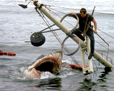 Boat Junk Yard Ct by Stamford Avon Hosts Its Annual Jaws Summer Screening