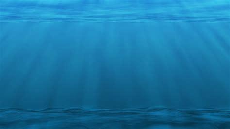 unterwasser meer ozean plankton 183 kostenloses bild auf pixabay