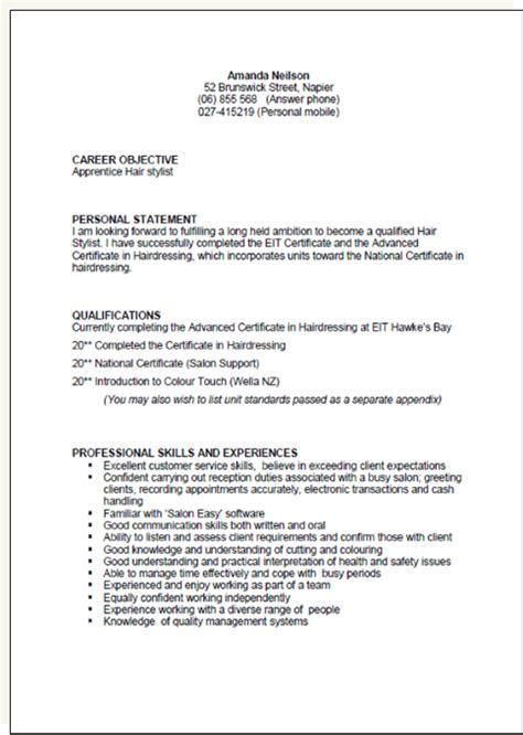 cv template  zealand resume format resume cv template