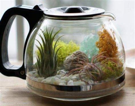 jardines acuaticos de interior