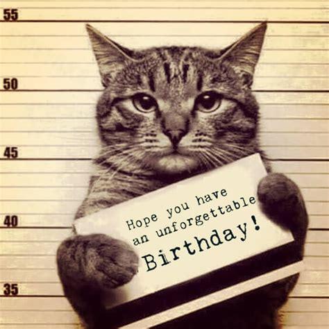 Birthday Cat Meme - birthday meme with a funny cat in a police happybirthdaybuzz com