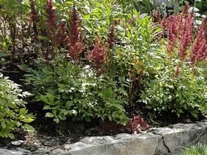 Steilen Hang Bepflanzen : b schungen und steilh nge bepflanzen lagerhaus urfahr ~ Lizthompson.info Haus und Dekorationen