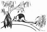 Anteater Coloring Tree sketch template