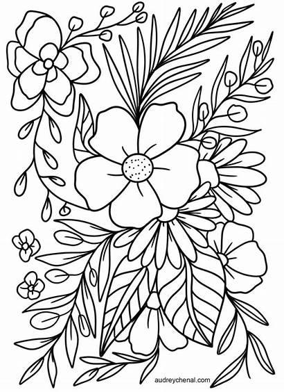 Coloring Printable Adults Flowers Flower Floral Simple