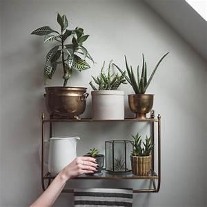 25 Indoor Garden Ideas - Your No 1 source of Architecture