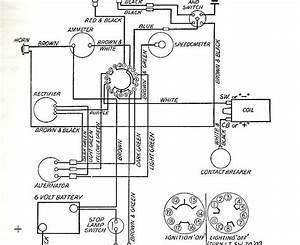 Wiring Diagram  29 Tr6 Wiring Diagram