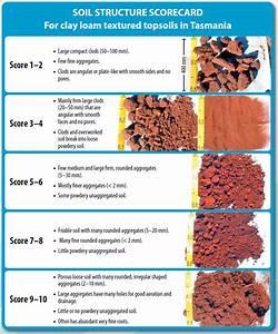 Soil Structure Decline