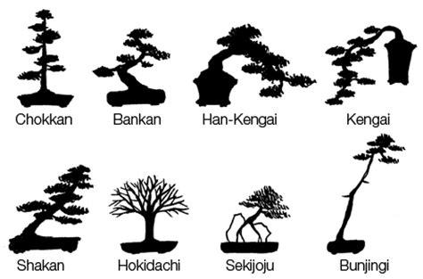 how do you grow a bonsai tree archives ajm gardens in durham ajm gardens in durham