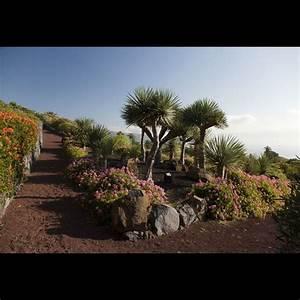 La Palma Jardin : parador de la palma paradores de turismo ~ A.2002-acura-tl-radio.info Haus und Dekorationen