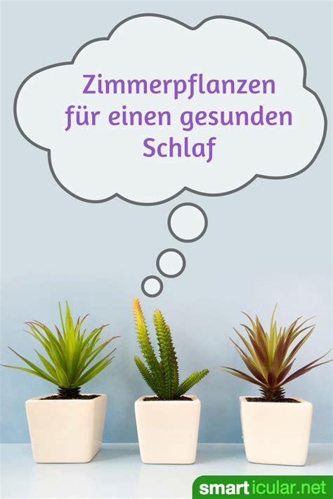 Pflanzen Im Schlafzimmer by Besser Schlafen Mit Zimmerpflanzen F 252 R Gute Luft Im