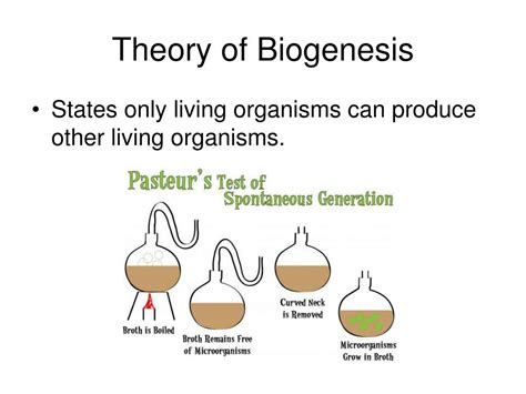 Biogenesis means making new living things. PPT - Spontaneous Generation PowerPoint Presentation, free ...