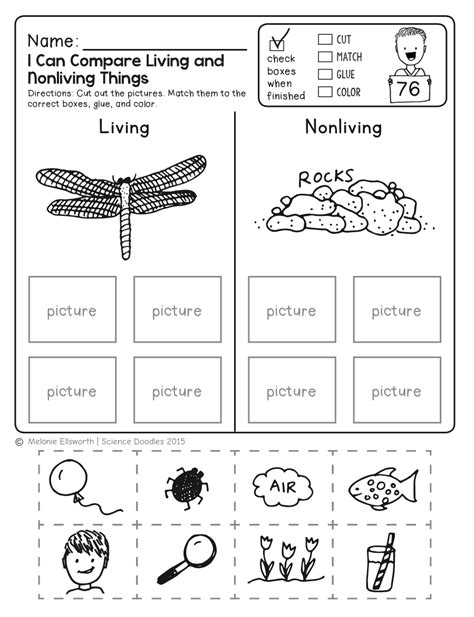 freebie no prep kindergarten science doodle printables t e a c h science worksheets