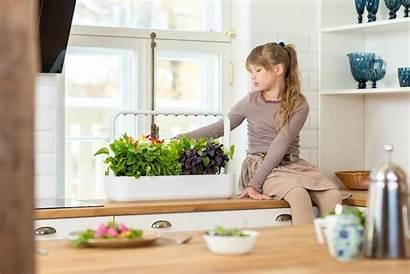 Indoor Garden Smart