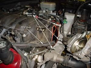 Chevy 350 Engine Vacuum Hose Diagram  U2022 Downloaddescargar Com