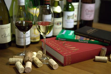 Top 10 wine books for Christmas