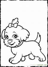 Coloring Pages Dog Catcher Template Puppies sketch template