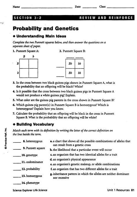 free simpsons genetic probability worksheet