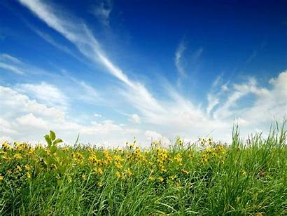 Sunny Background Wallpapers Nature Baltana Resolution