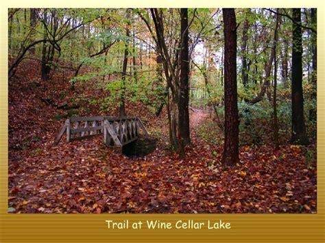 fall colors in virginia west virginia fall foliage colors