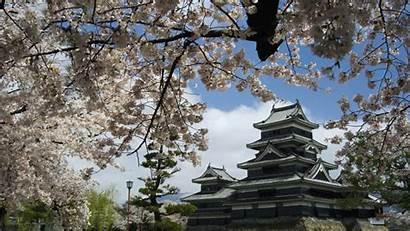 Japan Scene Sakura Relaxing Gifs Imgur Castle