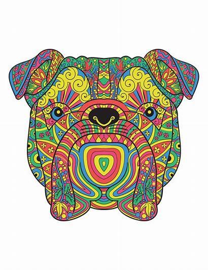 Mandala Animals Animal Coloring Geometric Adult Shapes