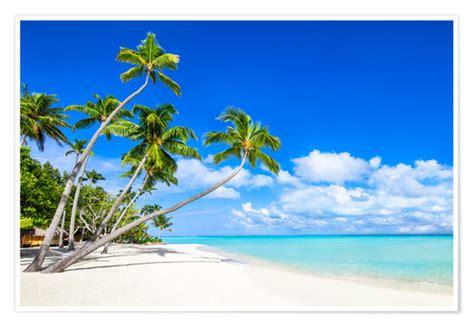white beach  palm trees   tropics posters