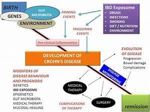 Frontline Ibd  Finding The Cause Of Ibd  U2013 Genes  Bugs Or