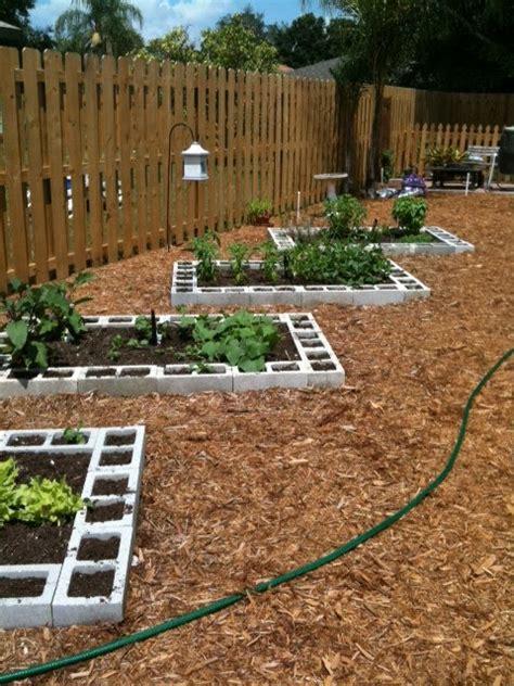 luv  vegetable garden design