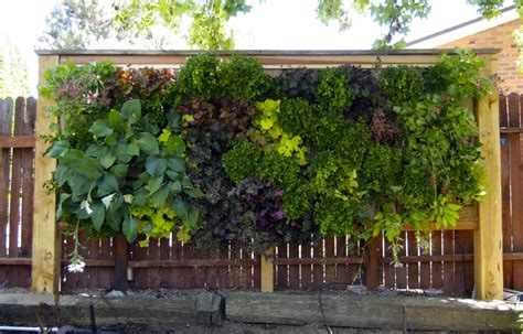 Edible Vertical Garden by 1000 Images About Inspiration Kitchen Gardens On