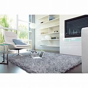 tapis salon feeling trend gris achat vente tapis With tapis salon gris clair