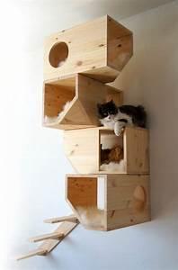 Maison Pour Chat Extérieur : l 39 arbre chat un terrain d 39 aventures et de repos pour ~ Premium-room.com Idées de Décoration