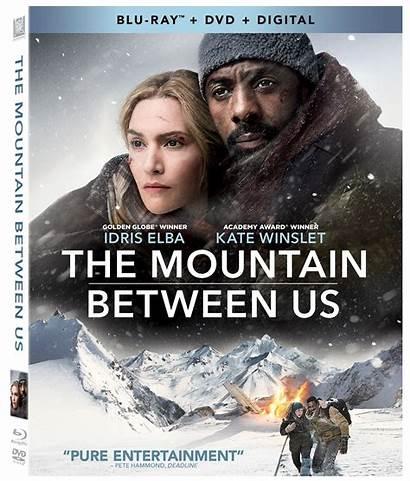 Mountain Between Blu Ray Dvd Film Movies