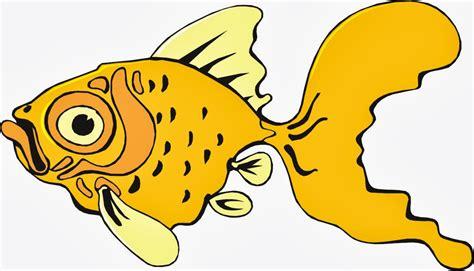 Funny Fish Cartoon Hd Wallpapers
