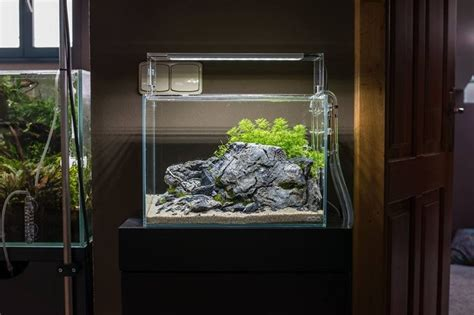 Small Tank Aquascaping by Aquascape Small Tank Nano Clear Reduced Design