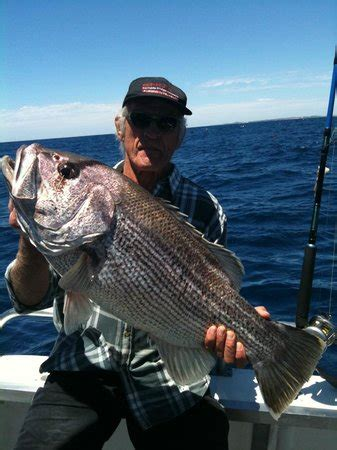 Boat Service Joondalup by Samson Fish Jigging Perth Picture Of Saltwater Charters