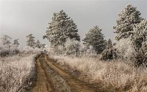 Dirt, Road, Nature, Landscape, Trees, Infrared, Wallpapers, Hd, Desktop, And, Mobile, Backgrounds