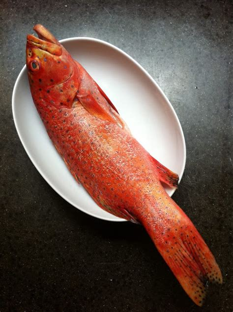 grouper steamed cost canto market bargaining bad