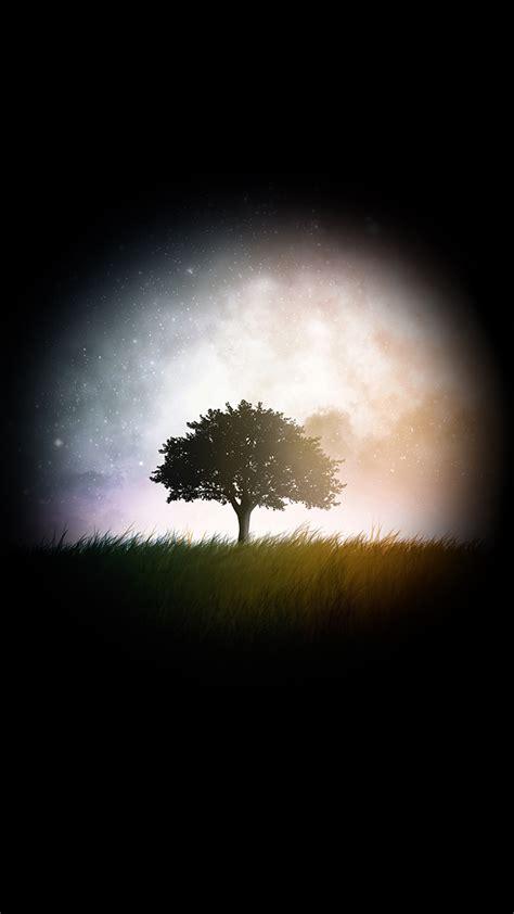 dark tree    hd wallpaper