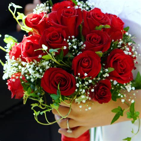 fresh  beautiful floral bouquets general