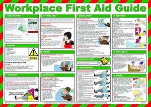 British Standard Compliant Comprehensive First Aid