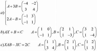 Matrix Matrices Equations Solve Exercise