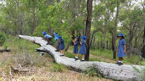 carmel adventist college teaching  learning nature play