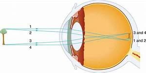 Physics Of The Eye
