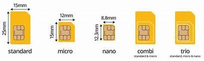 Sim Card Different Sizes Virtual Nano Micro