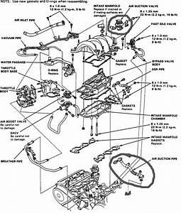 96 98 Civic Distributor Wiring Diagram